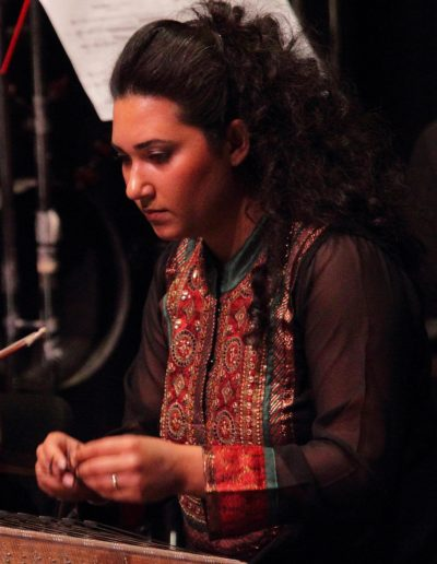 Saina Khaledi
